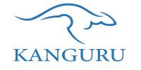 Pi Kanguru Yayıncılık